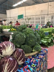 Saturday's market, organic farms converge at Mercado Sano.