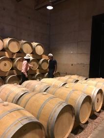 Cuna de Tierra winery, Dolores Hildago, Mexico