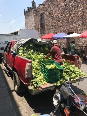 Outside the daily farmer's market. Unloading lettuce.